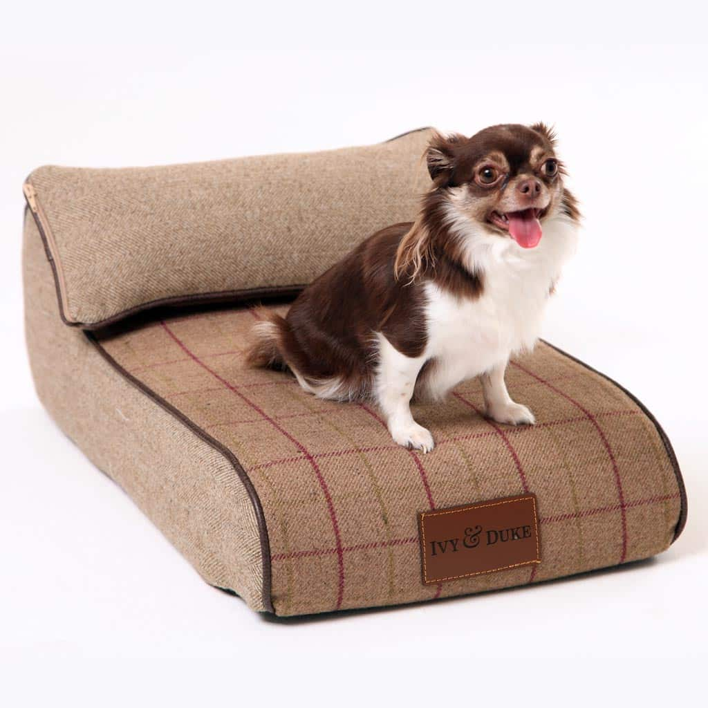 Small Size Fabric Chaise Chien In Heather