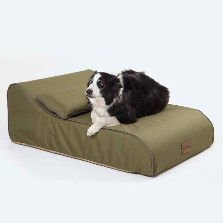 Waterproof Chaise Chien in Olive